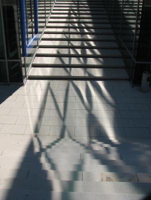 21. Jh, Architektur, Dresden