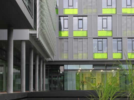 Architektur, Code Unique, Dresden, farbig, Informatik, TU Dresden, Ulf Zimmermann