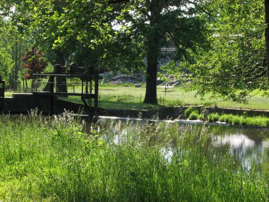 Grünberg, Röder