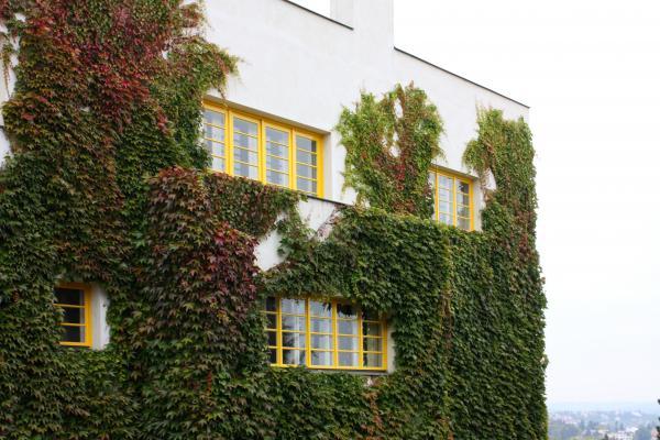 Adolf Loos, Architektur, Prag, Tschechien, Villa Müller