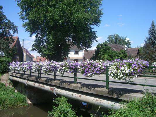 Fahrrad, Strasbourg, Urlaub