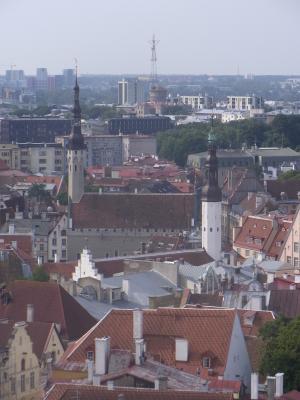Ausblick, Estland, Kirche, Rathaus, Tallinn