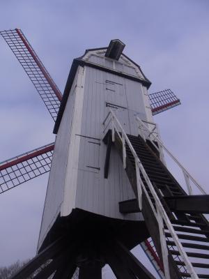 Belgien, Brügge, Mühle