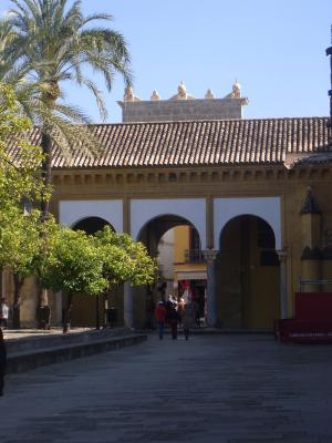 Andalusien, Cordoba, Kathedrale, Spanien
