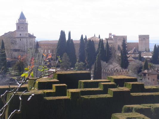 Alhambra, Andalusien, Granada, Park, Spanien