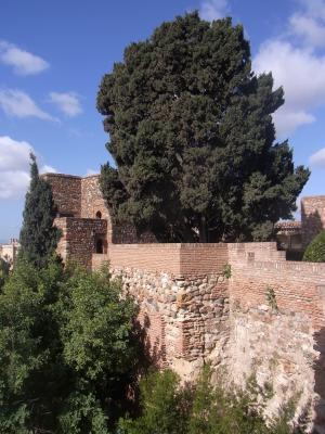 Andalusien, Burg, Malaga, Spanien