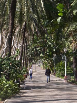 Andalusien, Malaga, Park, Spanien
