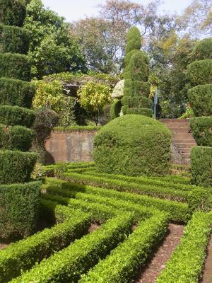 Madeira, Funchal, Portugal, Botanischer Garten