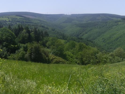 Frankreich, Montagne Noire