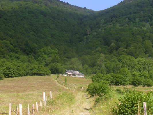 Frankreich, Pyrenäen, Vallée Ossau, Wanderung Pic de la Gentiane