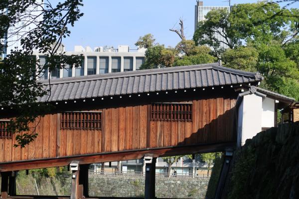 Brücke, Japan, Wakayama