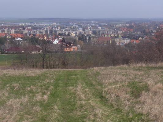 Polen, Schlesien, Swiebodzice
