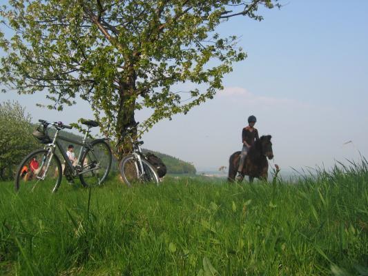 Rammenau, Oberlausitz, Ausflug, Fahrrad