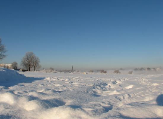 Schnee, Landschaft, Dresden