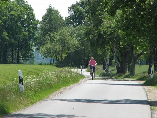 Fahrrad, Landschaft, Umland allg, Dresden