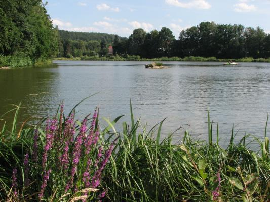 Wassertreter, Sohland, Fahrrad, Landschaft