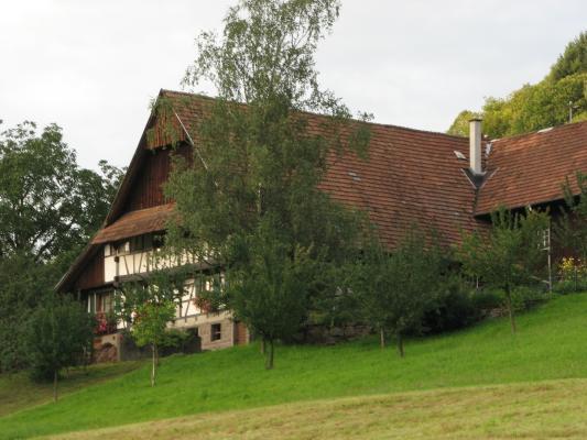 Urlaub, Architektur, Schwarzwald, Landschaft