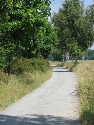fahrradtour, Landschaft, Oberlausitz, Rabitz-Rosenthal, Weg