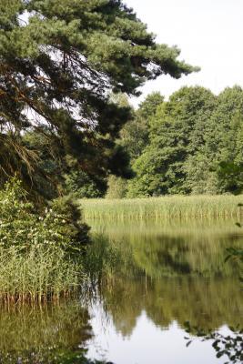 Fahrrad, Oberlausitz, Spiegelung, Teich, verwendet in|Kalender 2010, Wasser, Wittichenau