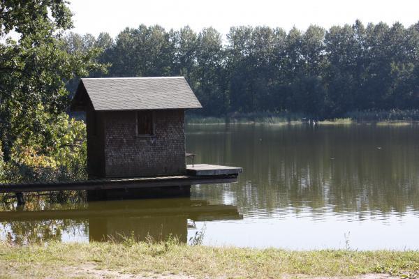 Baden, Fahrrad, Froschradweg, Oberlausitz, Wasser