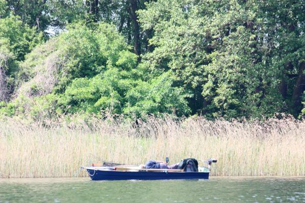 Keywords|Paddeln, Keywords|Wasser, Places|Mecklenburg Vorpommern, Places|Mecklenburg Vorpommern|Mecklenburger Seenplatte, Places|Mecklenburg Vorpommern|Plätlinsee NSG