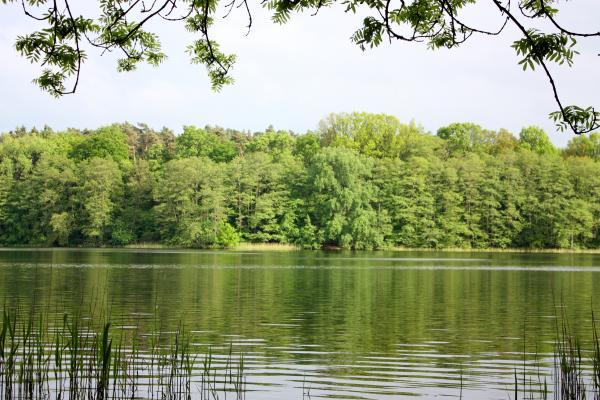 Keywords|Paddeln, Keywords|Wasser, Places|Mecklenburg Vorpommern, Places|Mecklenburg Vorpommern|Ahrensberg, Places|Mecklenburg Vorpommern|Drewensee, Places|Mecklenburg Vorpommern|Mecklenburger Seenplatte
