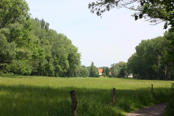 Burgenland, fahrradtour, Jahnatal, Sachsen, Wiese
