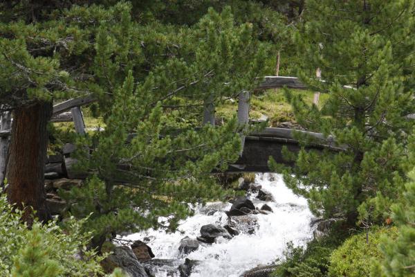 Bach, Gebirgsbach, Hochschoberhütte, Holzbrücke, Landschaft, Leibnitzalm, Leibnitzbach, Leibnitze, Schobergruppe, Wandern, Wasser