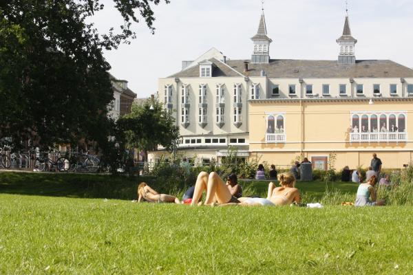 Dänemark, Odense, Wiese