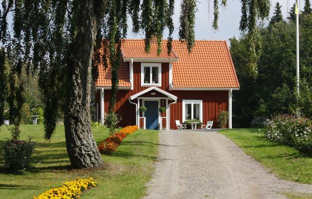 Blumen, bunt, orange, Pflanzen, rot, Schweden, Smaland