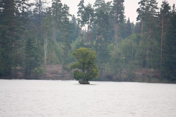 Aby, Kanu, Schweden, See, Smaland, Värensleden, Wasser