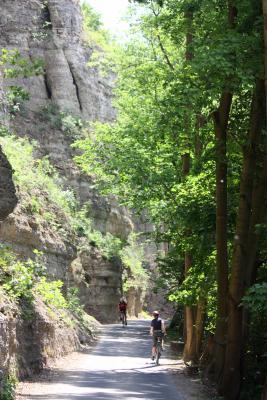 Bäume, Fels, Landschaft, Thüringen, Werra