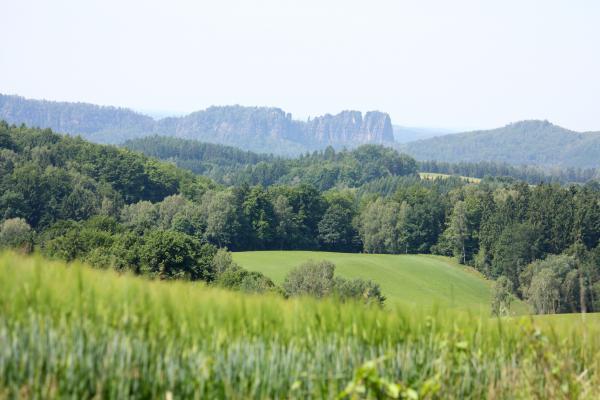 Elbsandsteingebirge, Ottendorf, Schrammsteine, Sächsische Schweiz, Wandern