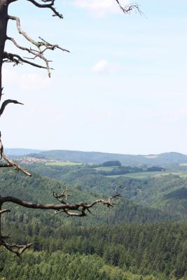 Elbsandsteingebirge, Sächsische Schweiz, Wandern