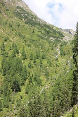 Alpen, Außerretschitz, Egg, Egger Wiesen, Fleckenkopf, Mitten und Umgebung, Mölltal, Putschal, Zoggleralm, Österreich