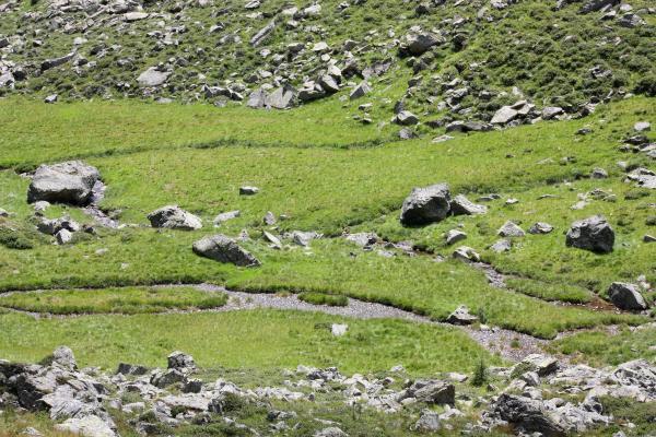 Alpen, Außerretschitz, Egg, Egger Wiesen, Fleckenkopf, Gebirgsbach, Mitten und Umgebung, Mölltal, Putschal, Wasser, Zoggleralm, Österreich