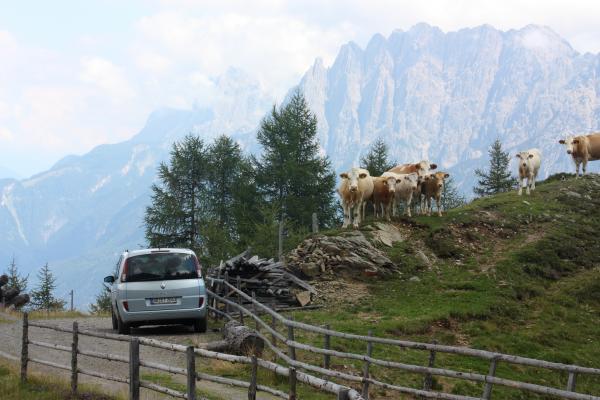 Alpen, Bichl, Deferegger Gebirge, Kontriner Kaser, Lienzer Dolomiten, Pustertaler Höhenstraße, Thulnkogel, Tullenkogel, Tullnkogel, Österreich