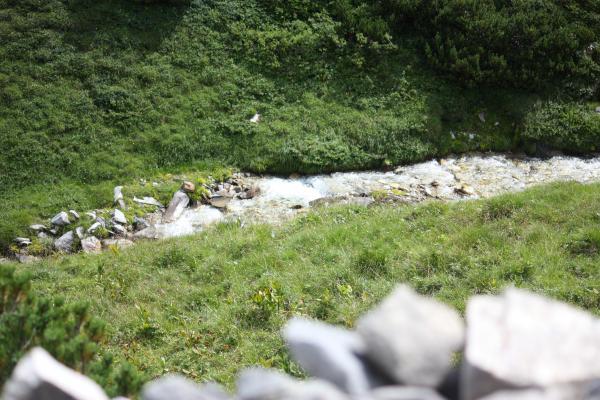 Alpen, Goldberggruppe, Litzlhofalm, Mittertörl, Österreich