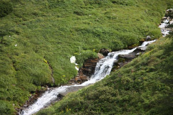 Alpen, Gebirgsbach, Goldberggruppe, Litzlhofalm, Mittertörl, Wasser, Österreich