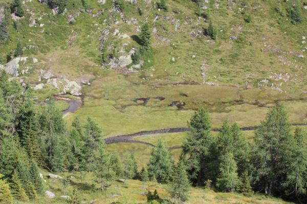 Alpen, Bärenebenhütte, Bärenkopf, Gebirgsbach, Hohe Tauern, Mölltal, Stall, Thörlkopf, Trögertörl, Törlkopf, Wasser, Österreich