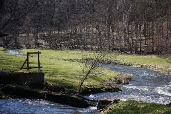 Fluß, Polenztal