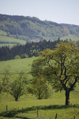 Ottendorf, Sächsische Schweiz