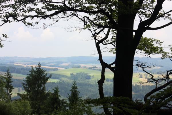 Affensteine, Rübezahlstiege, Sächsische Schweiz