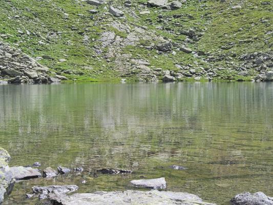 Lamnitzsee
