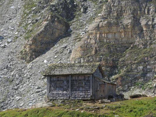 Alpen, Hohe Tauern, Holz, Trögeralmhütte, Österreich