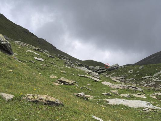 Alpen, Hohe Tauern, Trögeralm, Trögereck, Österreich