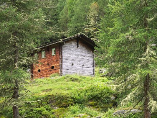 Alpen, Holz, Mitten und Umgebung, Zirknitztal