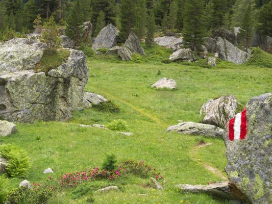 Alpen, Mitten und Umgebung, Zirknitztal