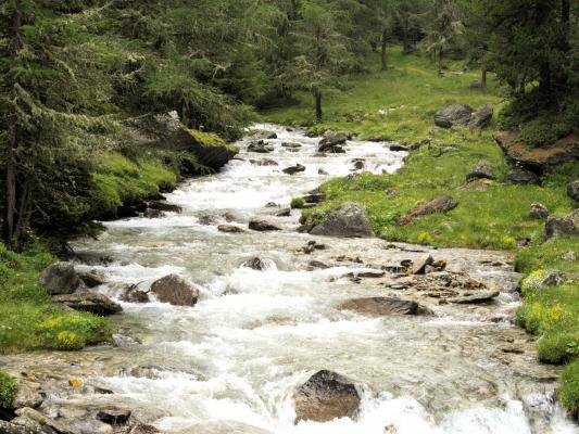 Alpen, Bach, Gebirgsbach, Mitten und Umgebung, Wasser, Zirknitztal