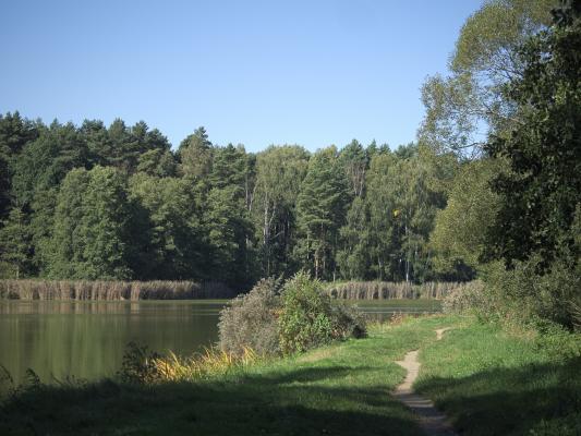Baden, Königsbrück, Wasser